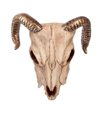 The Boneyard Halloween Ram Head with Bronze Horns