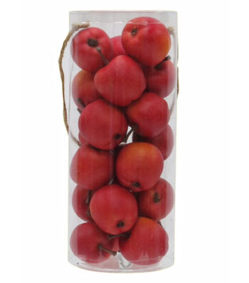 Blooming Autumn Mini Apples-Red