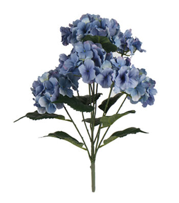 "Bloom Room 19"" Hydrangea x5 Bush-Purple"