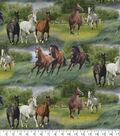 Novelty Cotton Fabric 44\u0027\u0027-Horses in The Grass