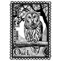 Armail Owl-unmounted Rubber Stp