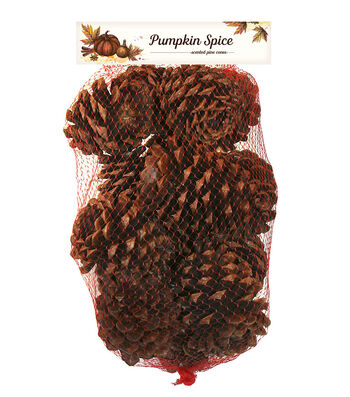 Fall Harvest 10oz. Pumpkin Spice Scented Pinecones