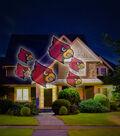 University of Louisville Cardinals Team Pride Light