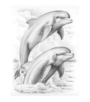 "Sketching By Number Kit 8""X11-3/4""-Dolphins, , hi-res"