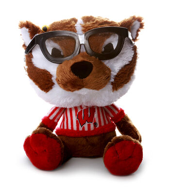 University of Wisconsin Badgers Study Buddy