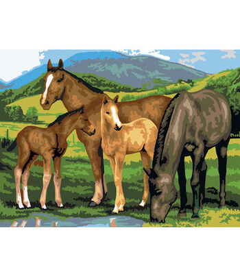 """15-1/4""""x11-1/4"""" Junior Paint By Number Kit-Horse & Foals"""
