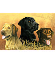 "Reeves Paint By Number Artist's Collection 12""X16-Labs In Marsh, , hi-res"