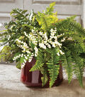 Potted Ferns with Lily of the Valley