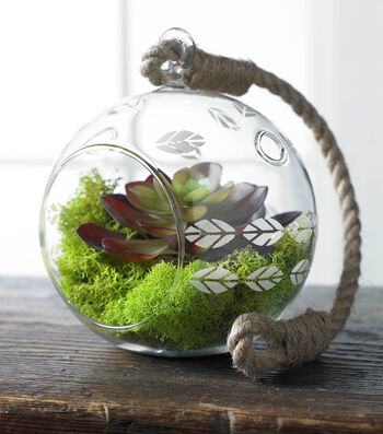 How To Accented Glass Terrarium