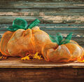 Decorative Mesh Pumpkin