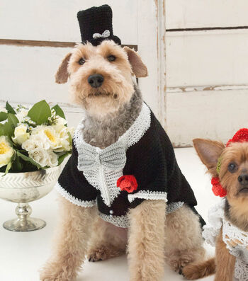 Make A Barking Groom Tuxedo And Top Hat