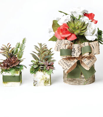 How To Make Succulent Birch Containers
