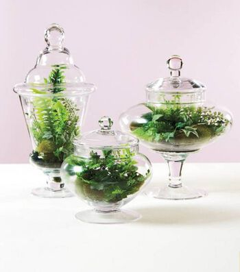Tabletop Terrarium Jars