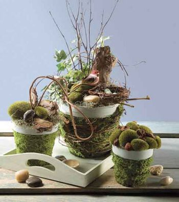 Mossy Clay Pot Arrangements