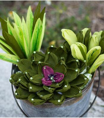 Make Summer Succulents