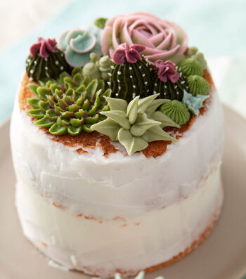 How To Make A Succulent Naked Cake