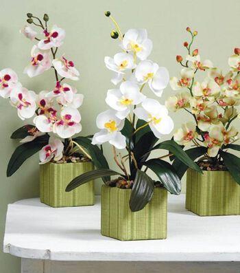 Elegant Orchid Arrangement