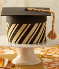 Grad\u0027s Success 5-Layer Fondant Cake
