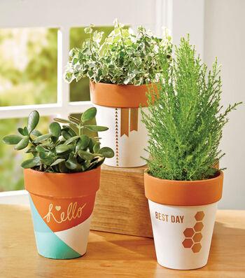 Trendy Plant Pottery
