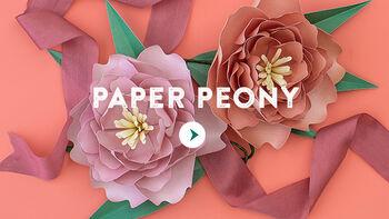 Paper Peony