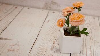 How-To: Bloom Room Square Ceramic Floral Arrangement