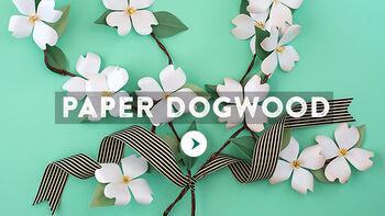 Paper Dogwood