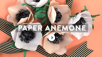 Paper Anemone