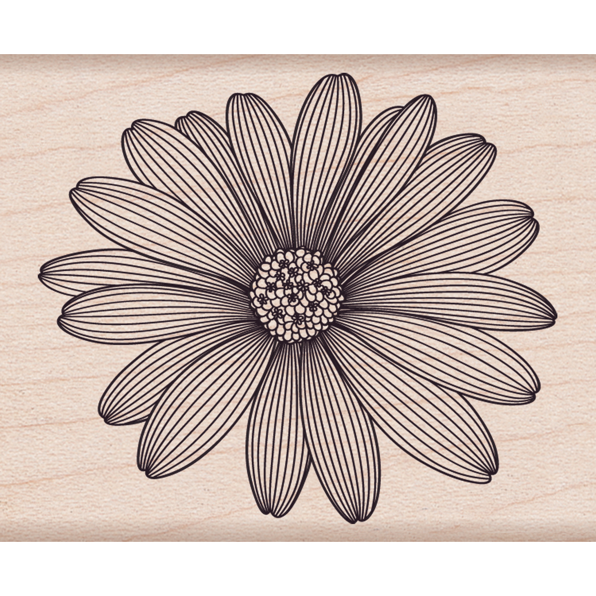 Hero Arts Mounted Rubber Stamps Etched Daisy