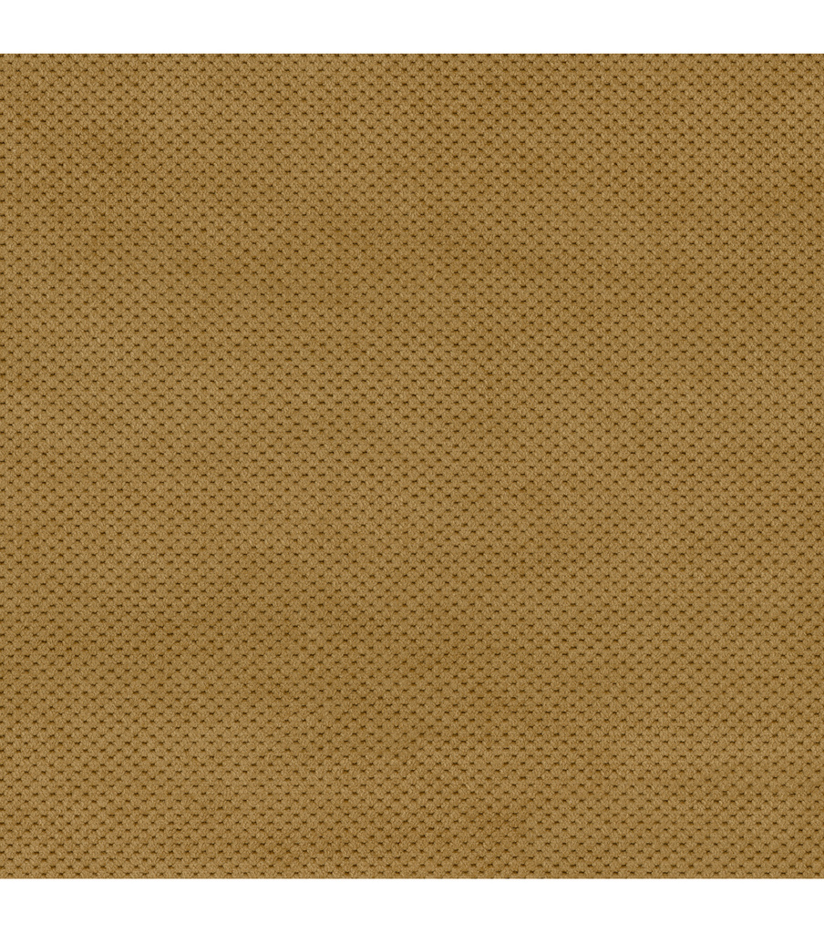 Home Decor 8\u0022x8\u0022 Fabric Swatch-Signature Series Griffin Brownstone