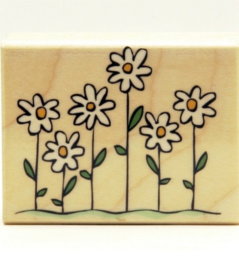 Hero Arts Rubber Stamp-Perky Flowers