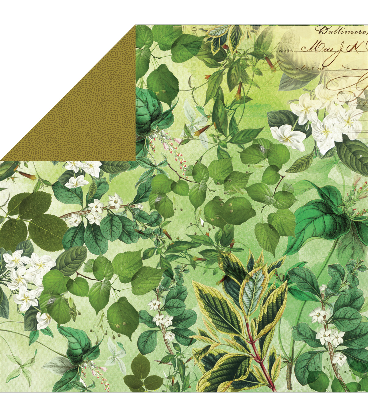 Kaisercraft Limelight Double-Sided Cardstock Paper Learn