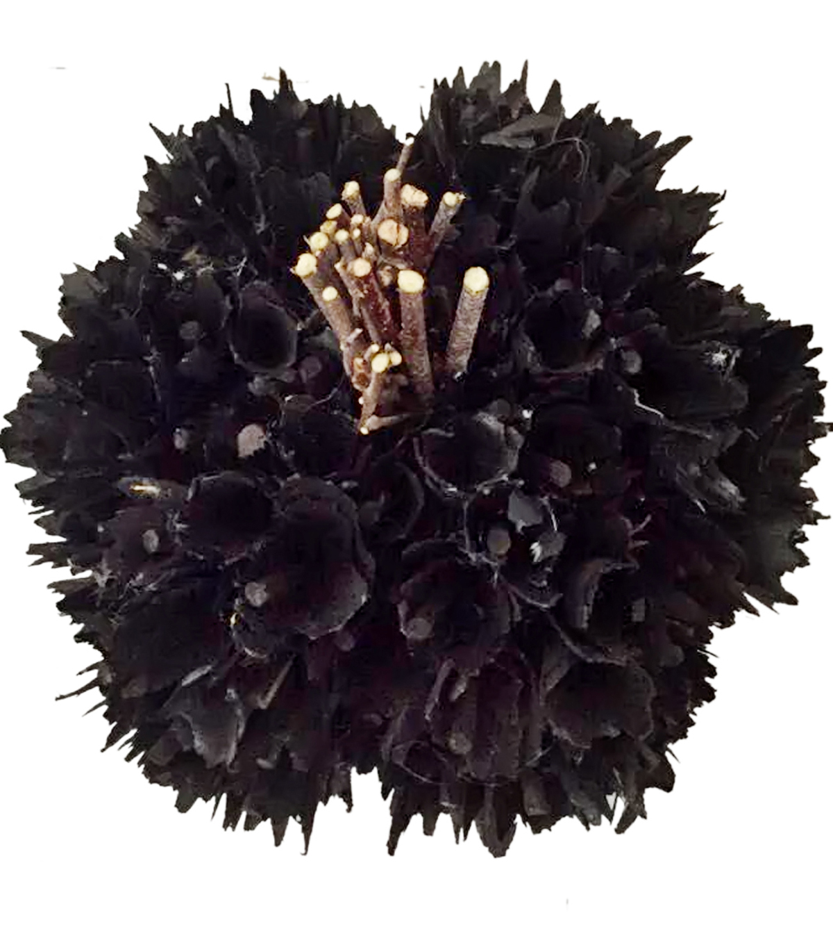 Pumpkin Boutique Halloween Medium Wood Chip Pumpkin-Black