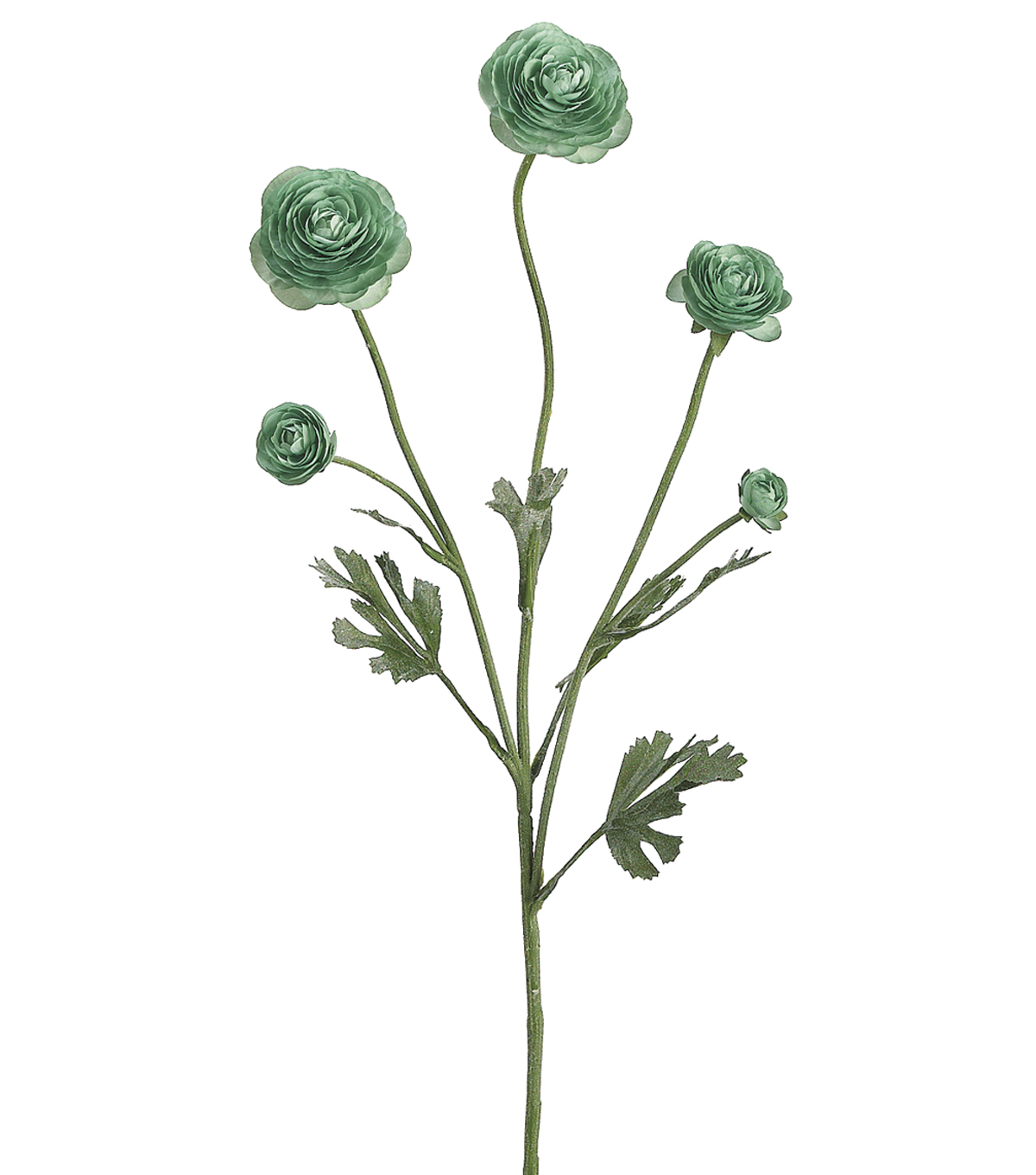 Bloom Room 28\u0022 Ranunculus Spray-Mint