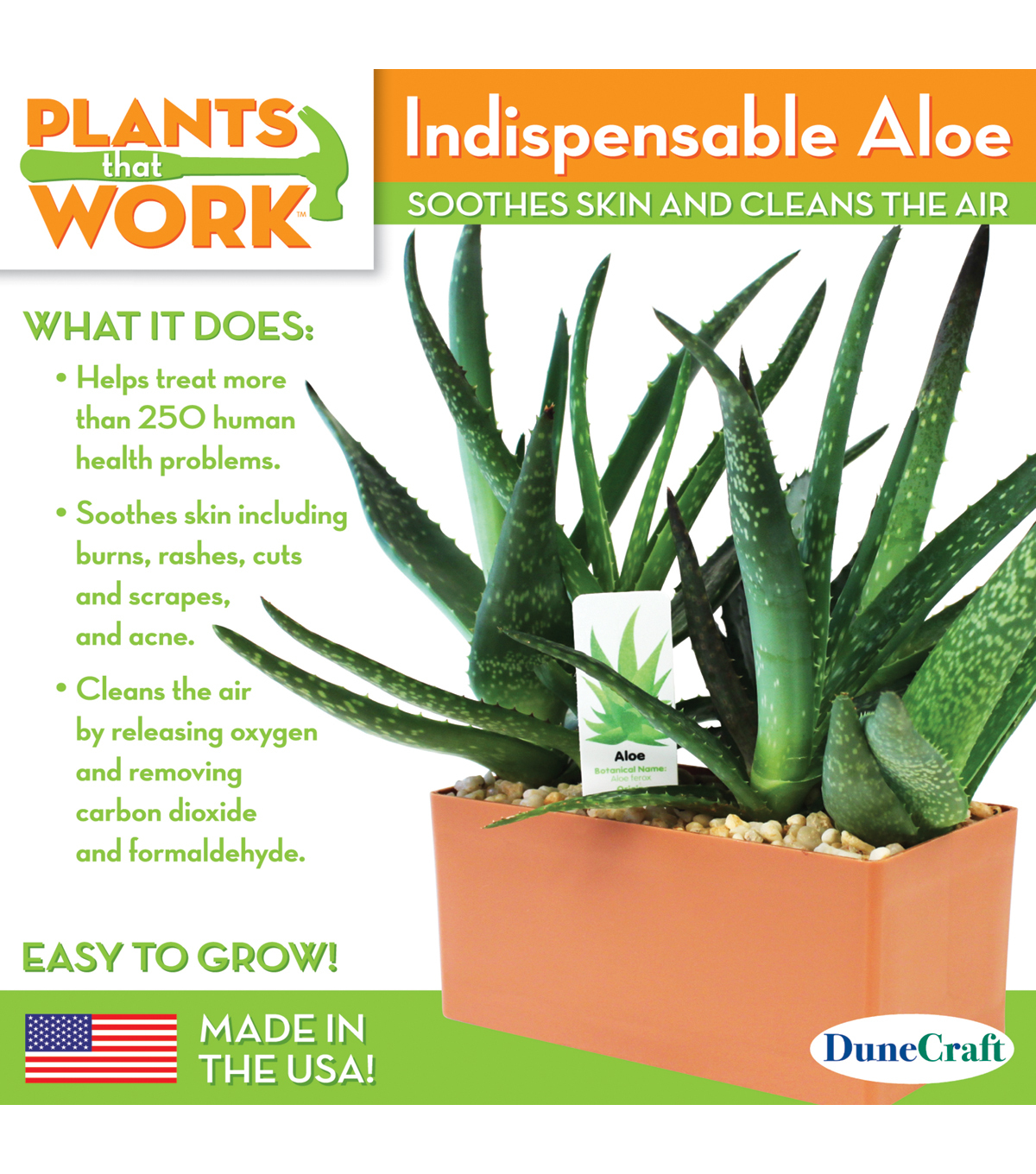 Plants That Work: Indispensable Aloe Garden Plant Cube