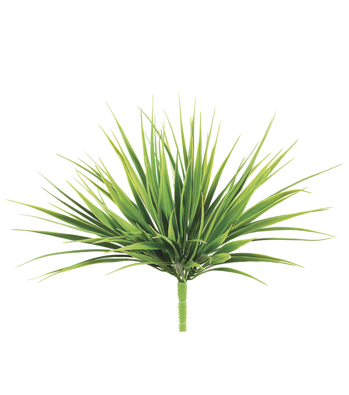 12\u0022 Vanilla Grass Bush with 98 Lvs. Two Tone Green