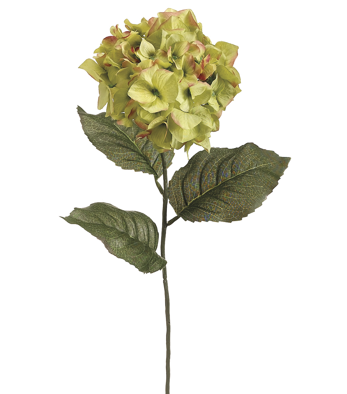 Bloom Room 30\u0022 Hydrangea Stem-Pink Green
