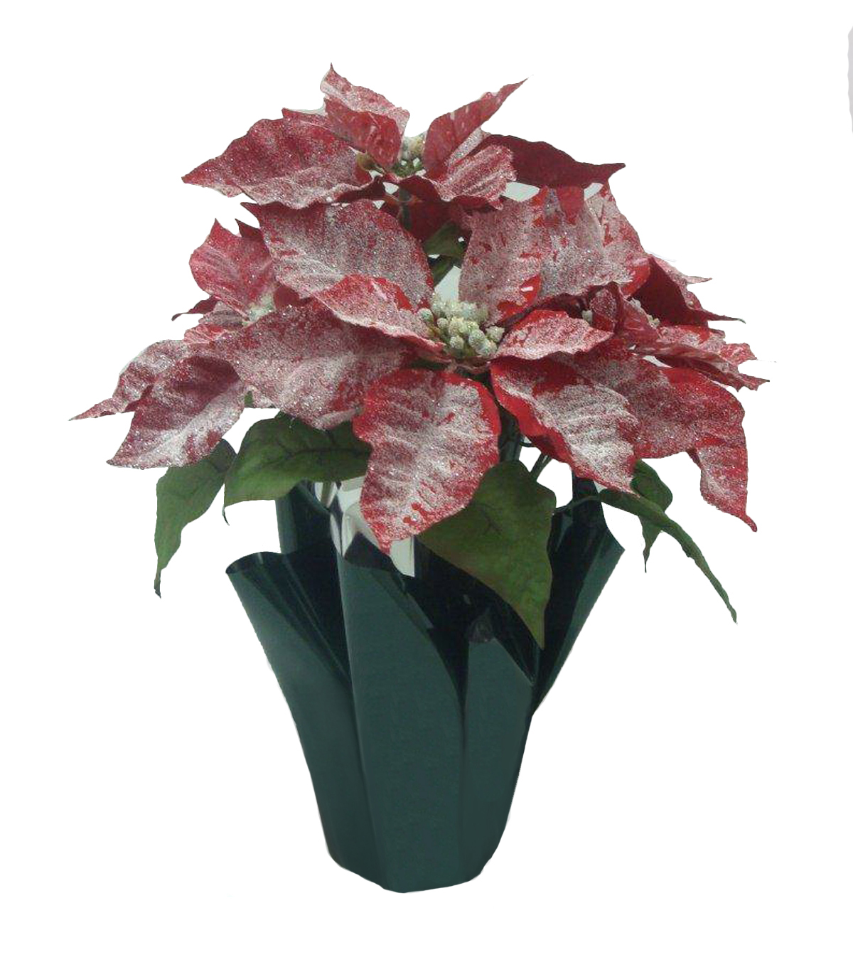 Potted Poinsettia Glisten Red