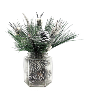 Blooming Holiday Snowed Pine with Pinecone In Glass