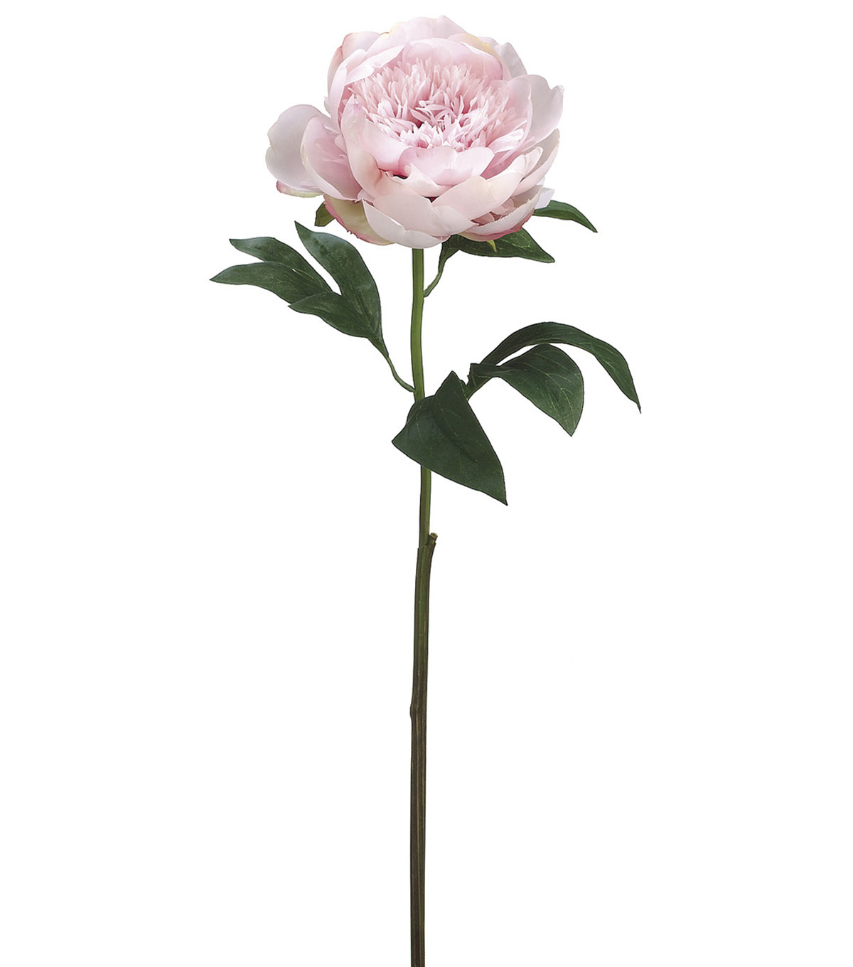 Bloom Room 24\u0027\u0027 Peony Stem-Pink