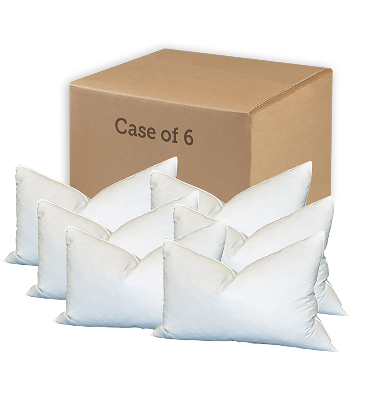 Special Value Case of Six Feather Pillows-14\u0022 X 18\u0022