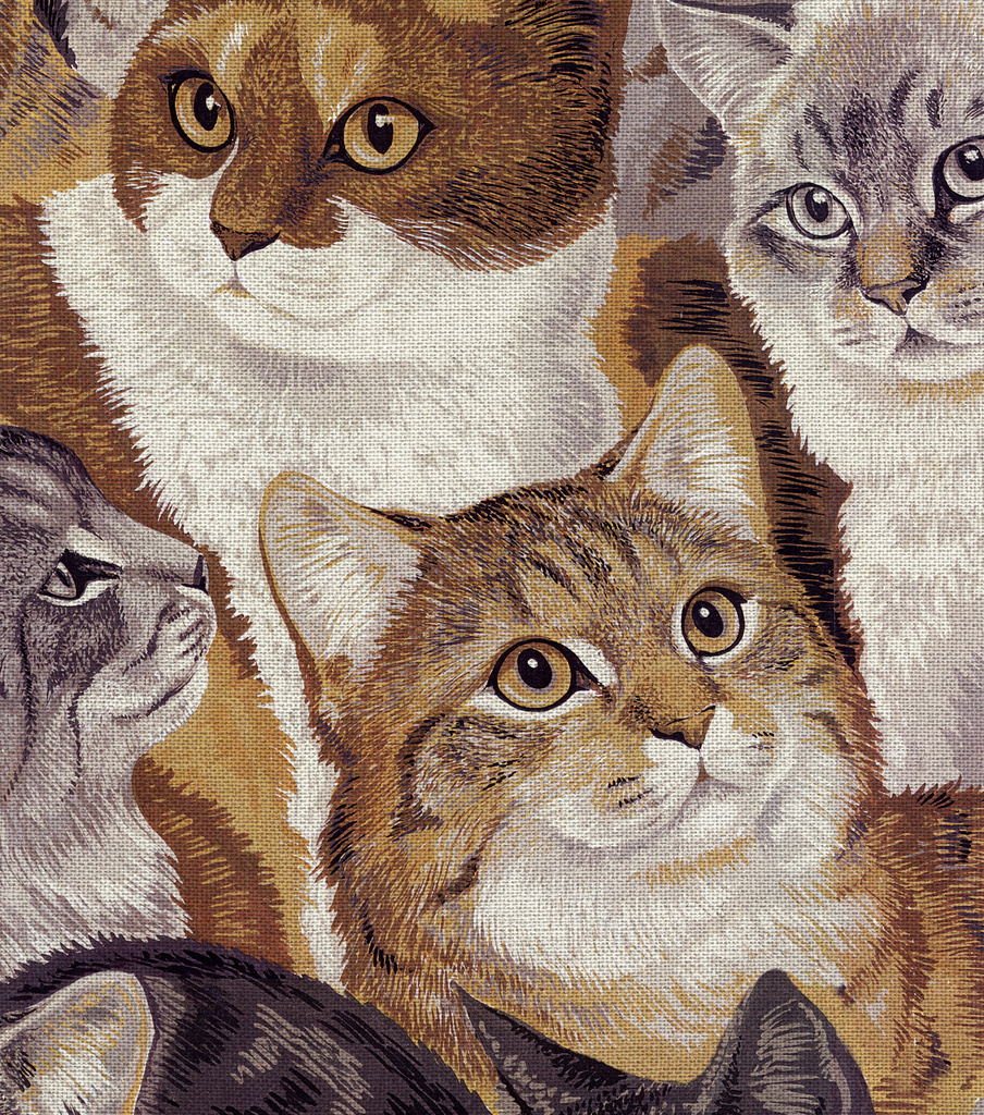 Novelty Cotton Fabric 44\u0022-Packed Cats