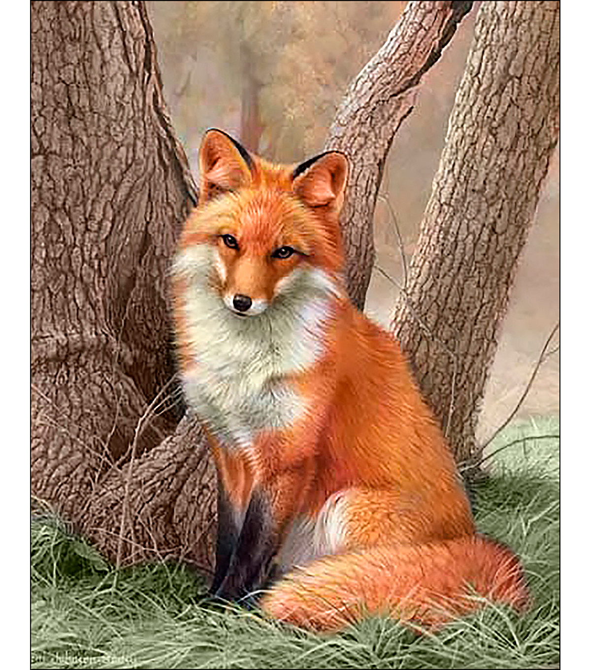 Collection D\u0027Art Diamond Embroidery/Printed/Gem Kit 48X38cm-Fox