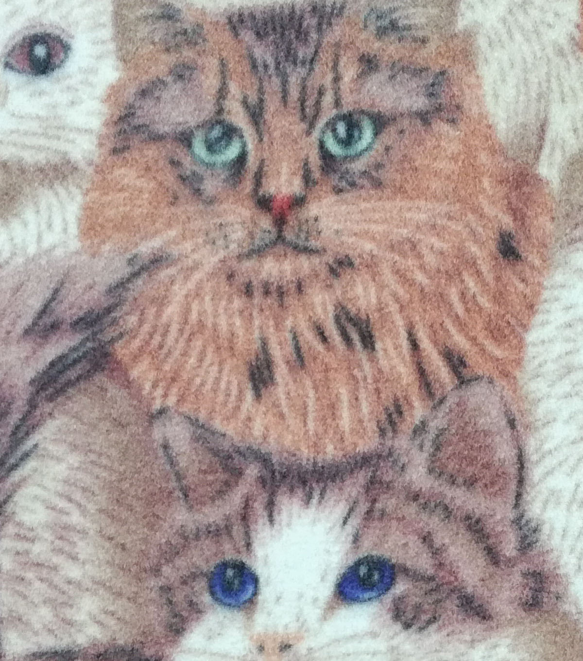 Anti-Pill Fleece Fabric 59\u0022-Cat Collage