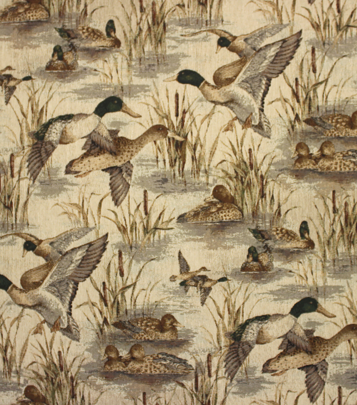 Home Decor 8\u0022x8\u0022 Fabric Swatch-Upholstery Fabric Barrow M6716-5604 Marsh