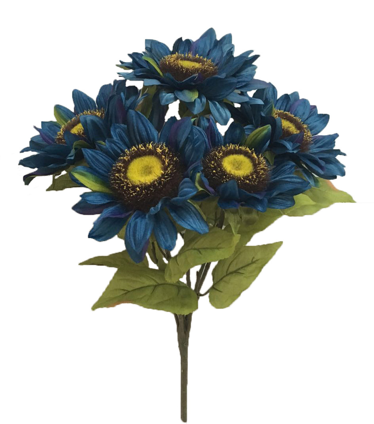 Blooming Autumn 20\u0027\u0027 Sunflower Bush-Blue