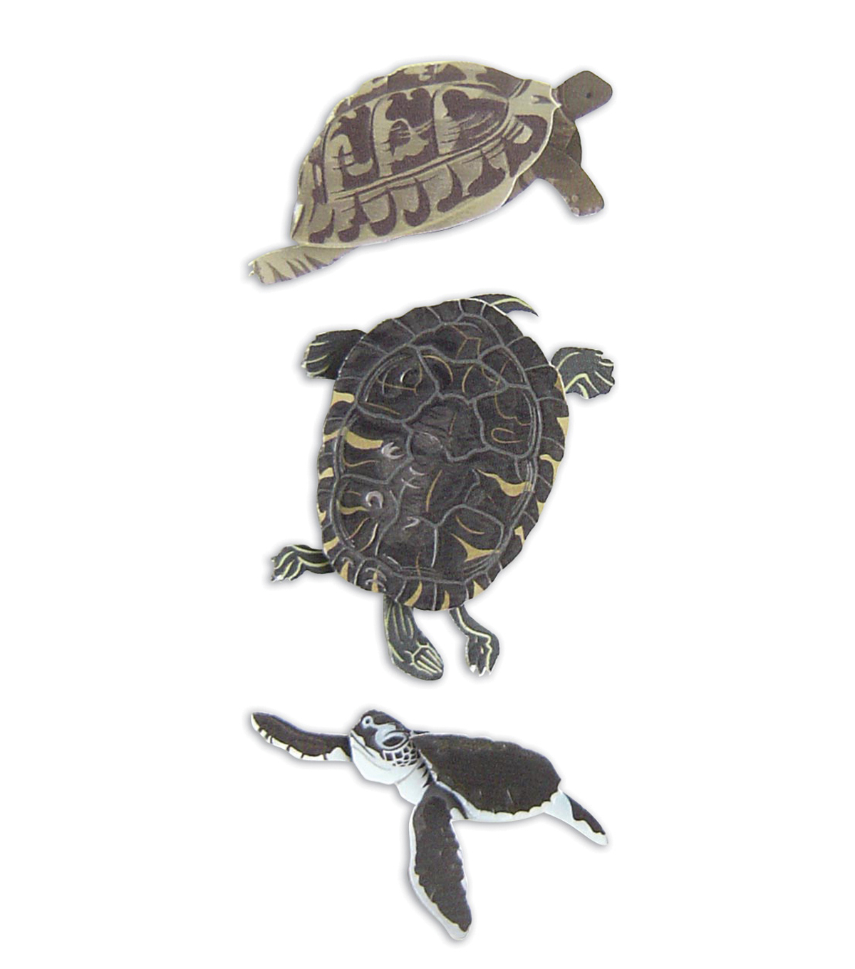 Jolee\u0027s By You Dimensional Embellishment-Turtle