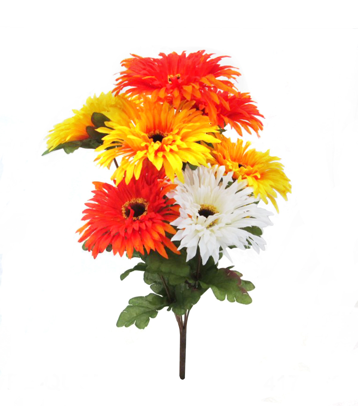 Blooming Autumn 16'' Spider Gerbera Daisy Bush-Cream, Yellow & Orange