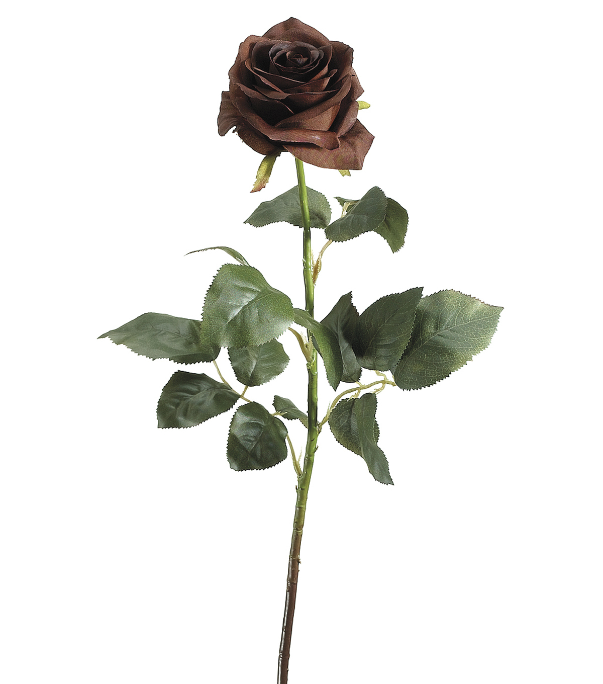 "Bloom Room 27.5"" Confetti Rose Stem-Brown"