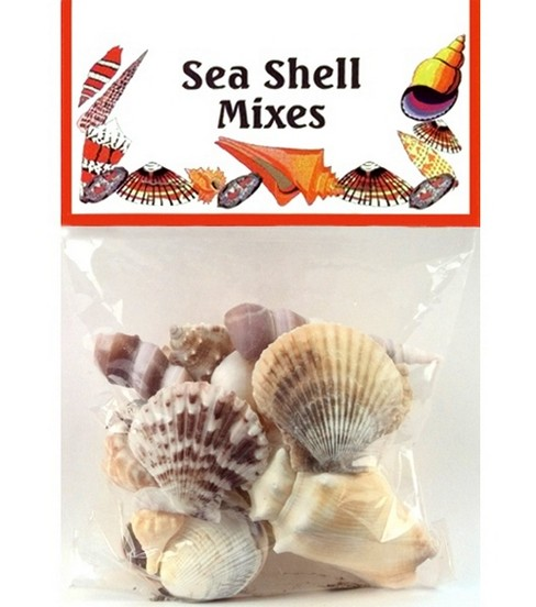Sea Shell Mixes-Medium