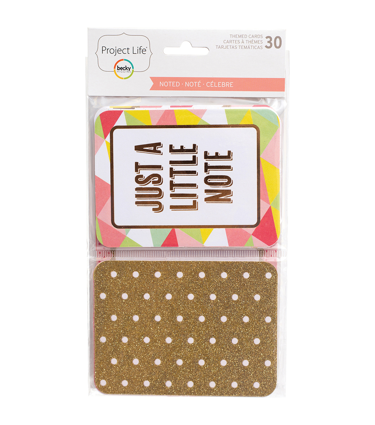 Project Life Specialty Themed Cards 30/Pkg-Noted